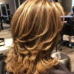 Best Blonde Highlights Hair Colour Toronto