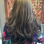 Best Hair Colour Highlights Haircuts Toronto