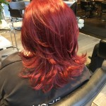 Best Hair Colour Haircuts Toronto Red Head Red Hair