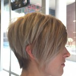 Best Hair Salon Toronto for Blonde Highlights Hair Tony Shamas Senior stylist