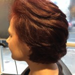 Best Hair Colour Toronto Salon Tony shamas