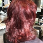 Best Hair Colour Salon Toronto Tony Shamas Red