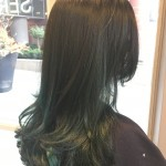 Best Balayage Hair Colour Salon Toronto Tony Shamas Teal Blue Green Colour Funky