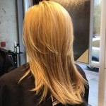 best blondes highlights hair salon Toronto master colourist Tony Shamas