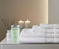 Best Balancing Shampoos for Oily Hair Bain Divalent Kerastase Toronto Hair Salon